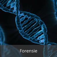 Ref_Forensie